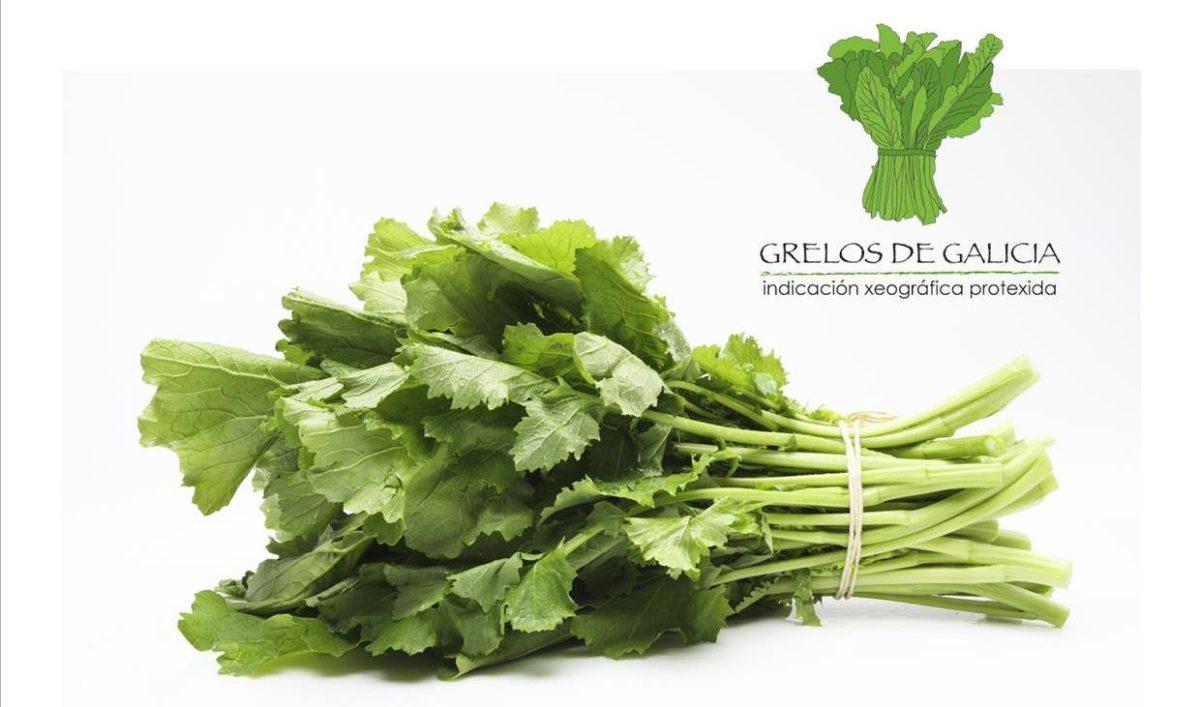 Grelos de Galicia IGP